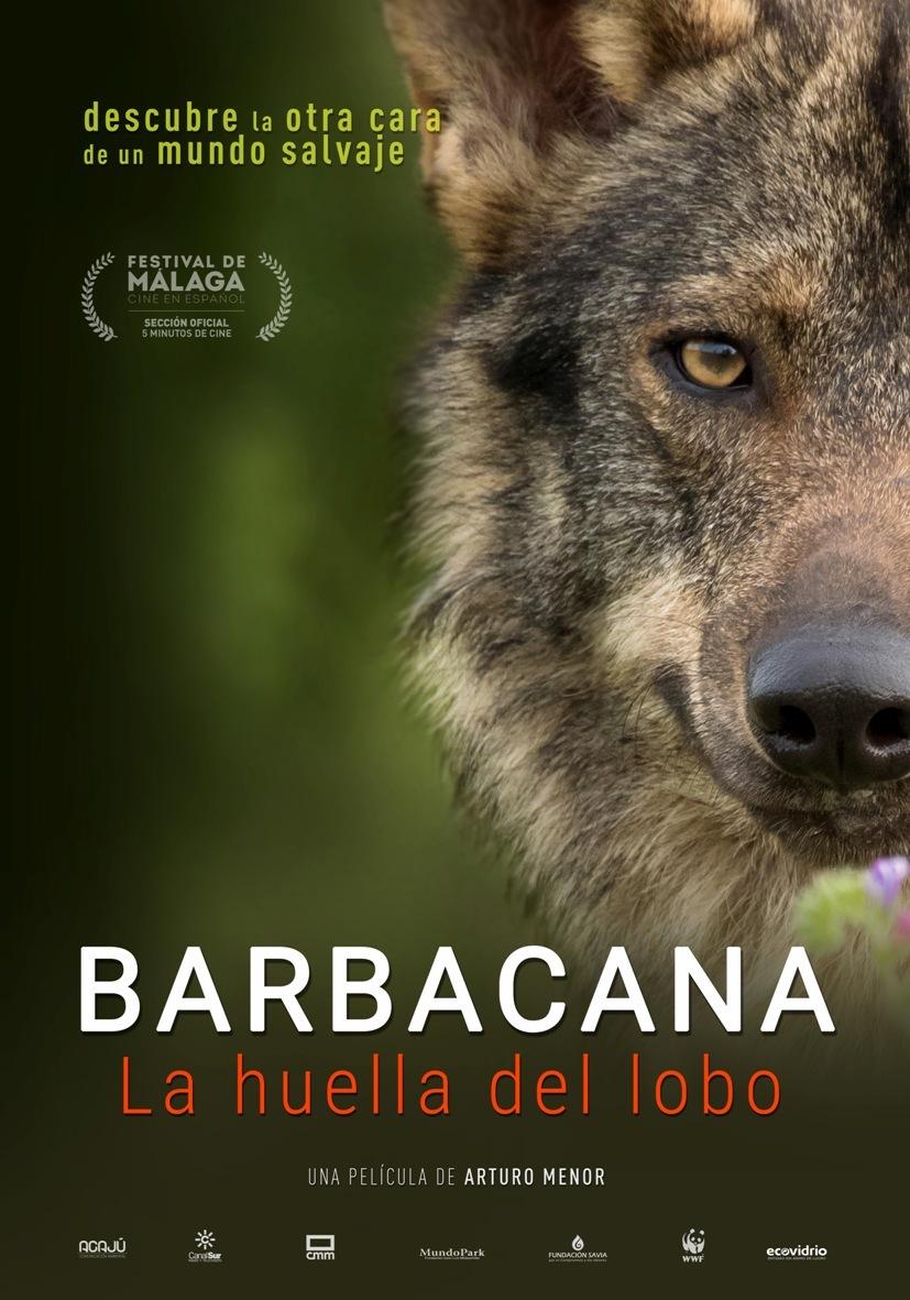 Cartel de Barbacana, la huella del lobo