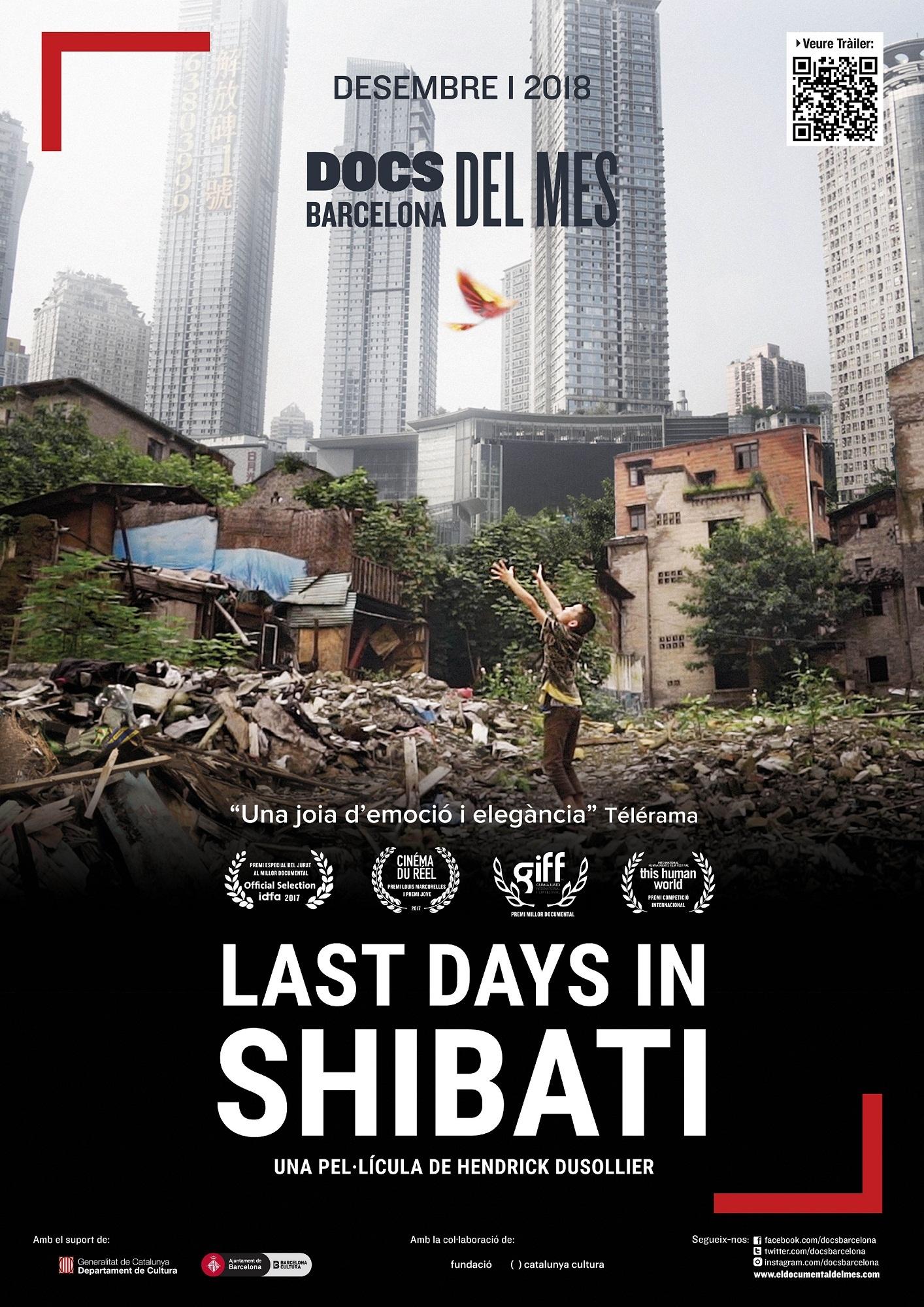 Cartel de Last Days in Shibati