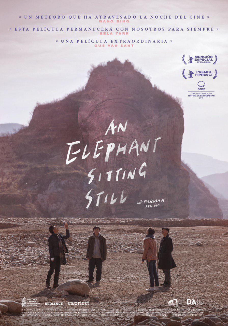 Cartel de An Elephant Sitting Still