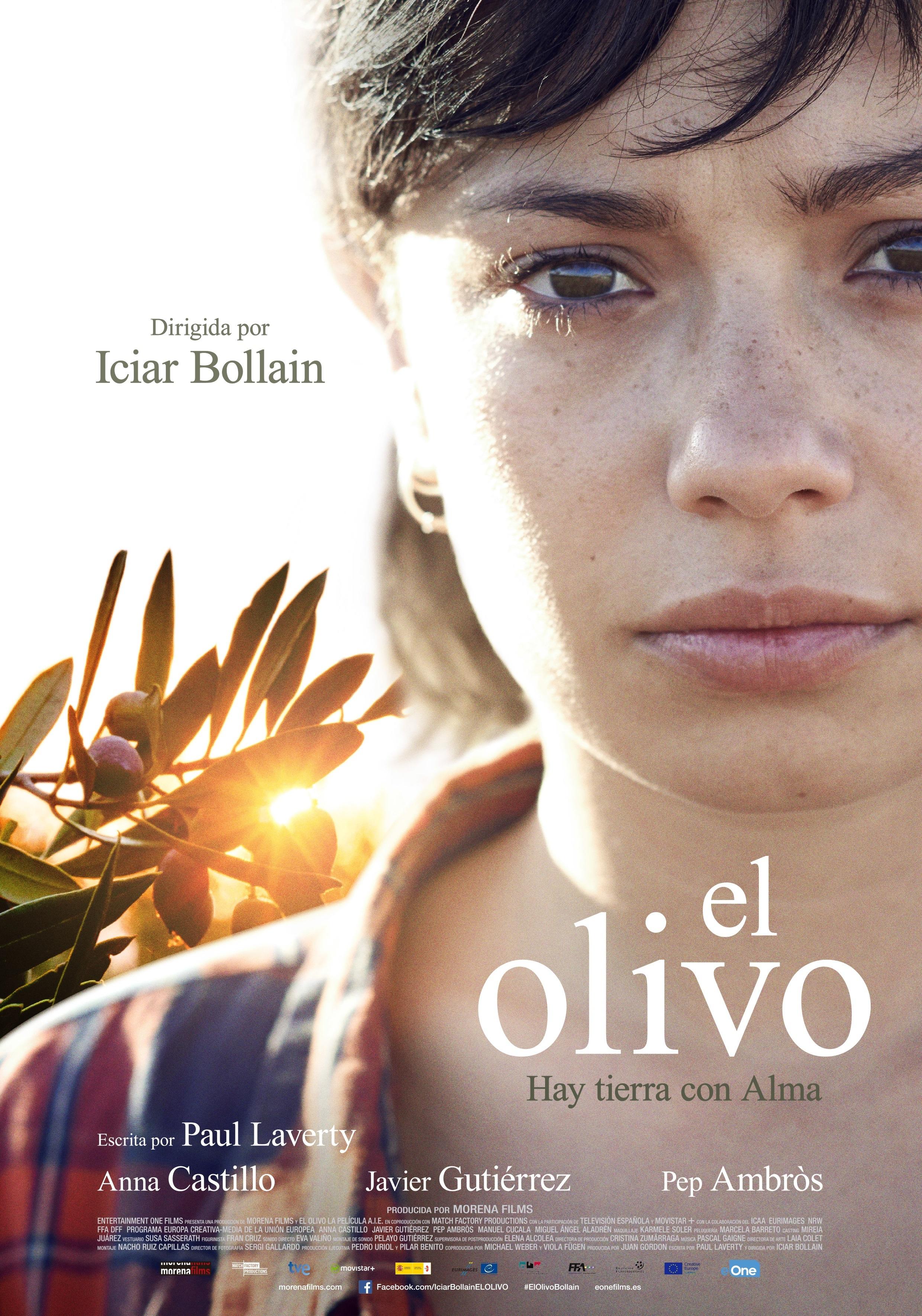 Cartel de El olivo