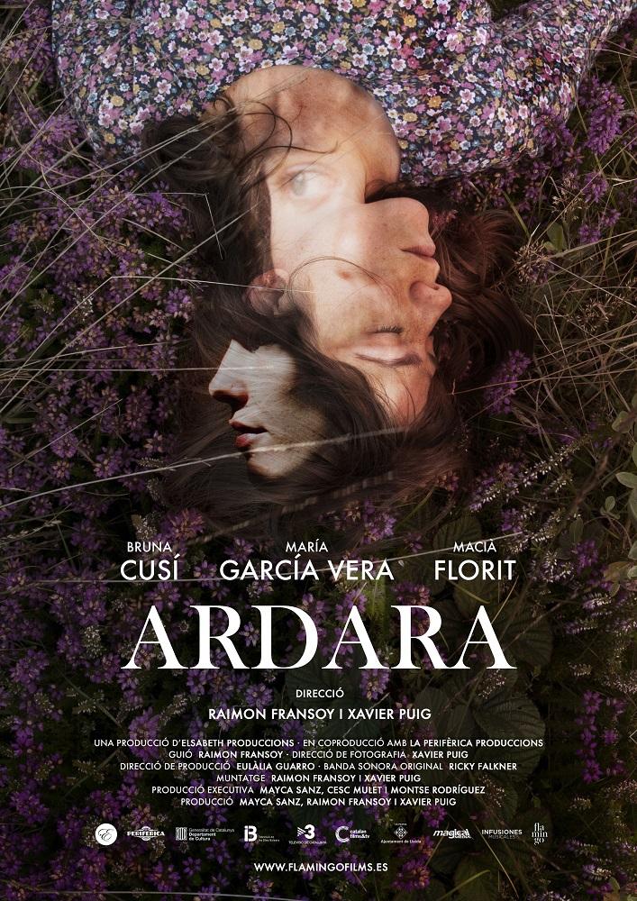 Cartel de Ardara