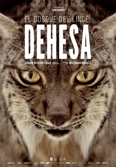 Cartel de Dehesa, el escondite del lince ibérico