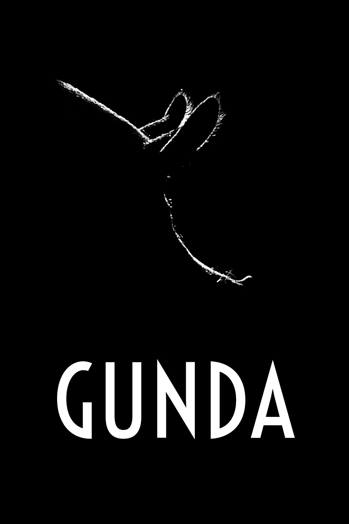 Cartel de Gunda